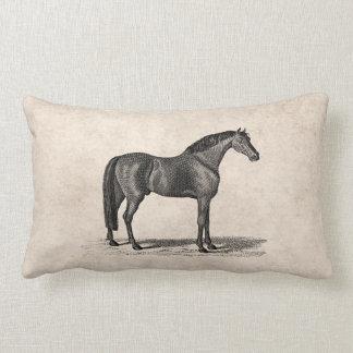 Illustration Arabe de cheval de 1800s vintages - Coussins Carrés