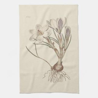 Illustration botanique de crocus écossais serviettes éponge