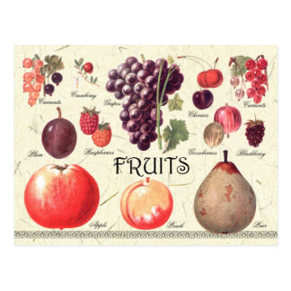Illustration de fruits cartes postales
