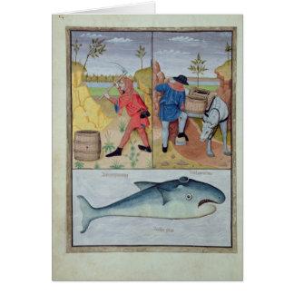 Illustration du 'livre des médecines simples carte de vœux
