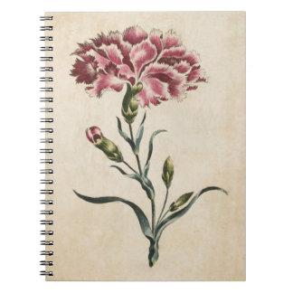 Illustration florale botanique vintage d'oeillet carnet