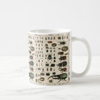 Illustration vintage de scarabée mug blanc