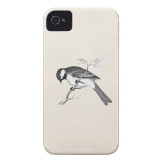 Illustration vintage d'oiseau de chanson - oiseaux coque iPhone 4 Case-Mate