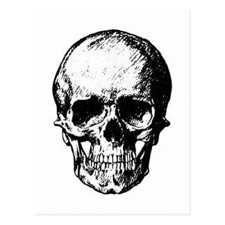 Illustration vintage noire et blanche de crâne carte postale