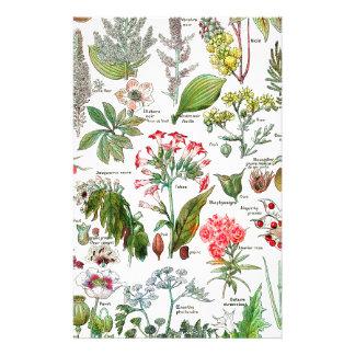 Illustrations botaniques papier à lettre personnalisable