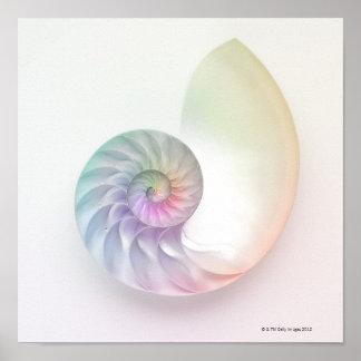 Image colorée artistique de nautilus posters