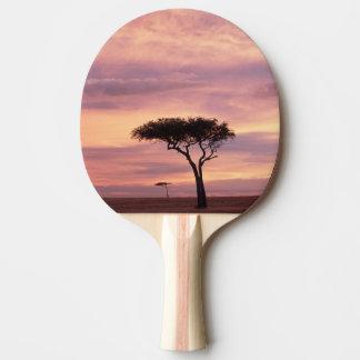 Image de silhouette d'arbre d'acacia au lever de raquette tennis de table