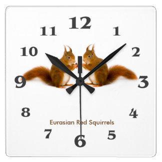 Image d'écureuil rouge pour l'horloge murale horloge carrée