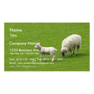 Image d'un mouton de bébé avec sa mère carte de visite standard