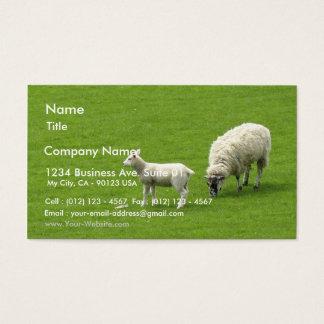 Image d'un mouton de bébé avec sa mère cartes de visite