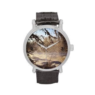 Image renversante de scène de rivière d'hiver montres