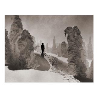 Image vintage de ski, une avenue des arbres carte postale