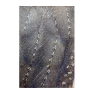 Impression En Acrylique Abrégé sur gris plume de Guineafowl