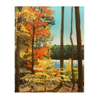 Impression En Acrylique Automne au grand lac, parc d'Umstead