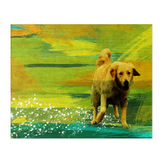 IMPRESSION EN ACRYLIQUE GOLDEN RETRIEVER