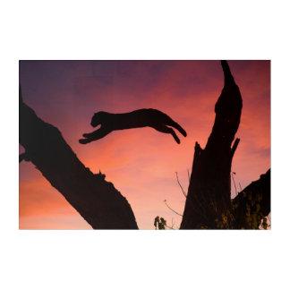 Impression En Acrylique Léopard sautant au coucher du soleil