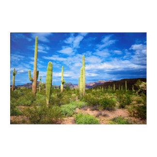 Impression En Acrylique Paysage de cactus de désert, Arizona