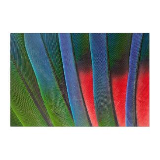 Impression En Acrylique Plumes Bleu-Dirigées de perroquet
