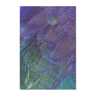 Impression En Acrylique Plumes de rouleau de Lilas-breasted
