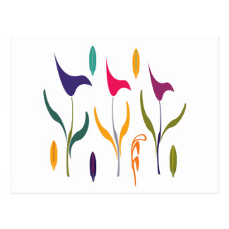 Impression lumineuse d'aquarelle de Lilly de calla Carte Postale