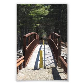 """Impression Photo 4"""" x 6"""" copie de pont de sentier de randonnée"""