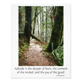 Impression Photo Affiche de sentier de randonnée de séquoias