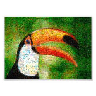 Impression Photo Art de collage-toucan de toucan - art de collage