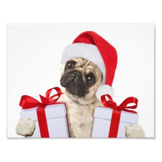 Impression Photo Cadeaux de carlin - chien Claus - carlins drôles -
