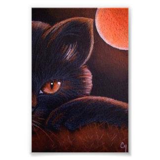 """IMPRESSION PHOTO CAT NOIR DE HALLOWEEN AVEC LA LUNE ORANGE 4"""" X 6"""""""