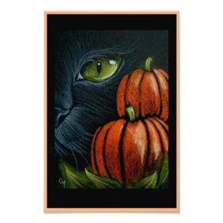 """Impression Photo CAT NOIR de HALLOWEEN avec PIMPKINS 4"""" X 6"""" COPIE"""