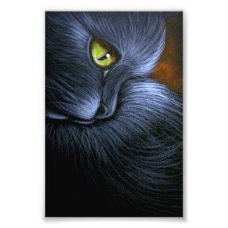 """IMPRESSION PHOTO CAT NOIR D'IMAGINAIRE DE HALLOWEEN 4"""" X 6"""" COPIE"""