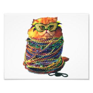 Impression Photo Chat de carnaval - chat coloré - chats drôles