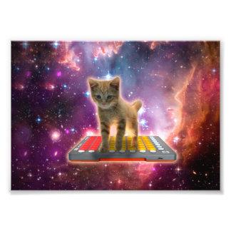 Impression Photo chat de clavier - chat tigré - minou