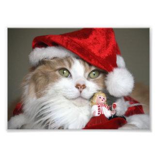 Impression Photo Chat de Père Noël - chat de Noël - chatons mignons