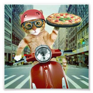 Impression Photo chat de pizza - chat - la livraison de pizza