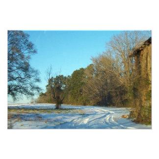 Impression Photo Chemin de Milou