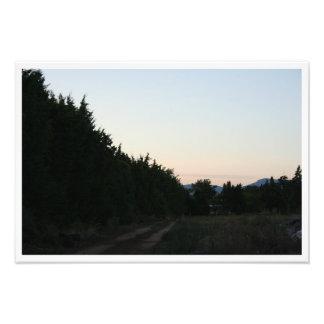 Impression Photo Chemin en Provence