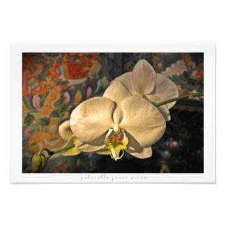 """Impression Photo Copie décorative de l'orchidée    de déesse (19"""" x"""