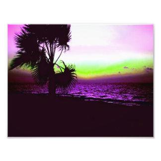 Impression Photo Coucher du soleil tropical