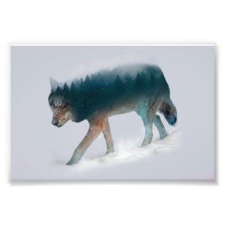 Impression Photo Double exposition de loup - forêt de loup - loup