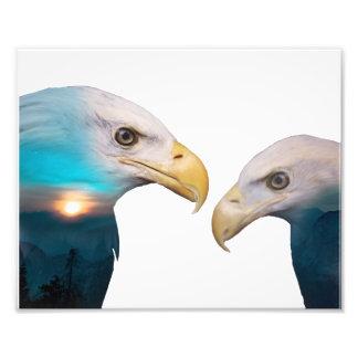 Impression Photo Double exposition d'Eagle