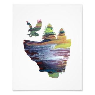 Impression Photo Eagle sur l'île de flottement