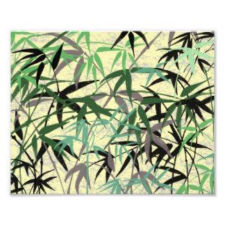 Impression Photo Feuillage en bambou, feuille, pousses - jaune vert