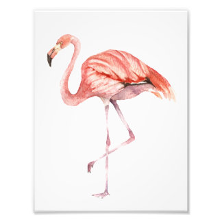 Impression Photo Flamant rose