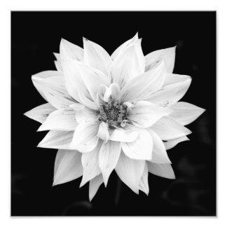 Impression Photo Fleur
