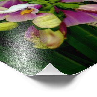 Impression Photo Fleurs de Purpurea de digitale