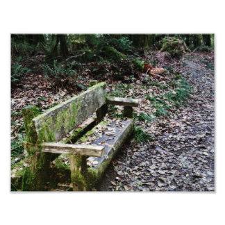 Impression Photo Itinéraire aménagé pour amateurs de la nature