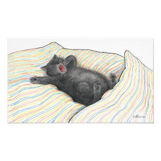 Impression Photo Kramer le bâillement de chat