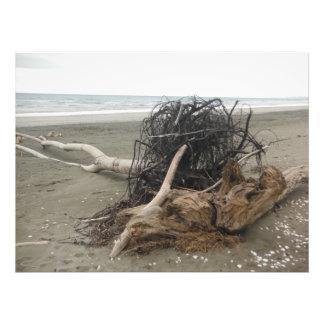 Impression Photo la plage