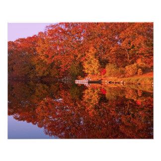 Impression Photo La réflexion de l'automne